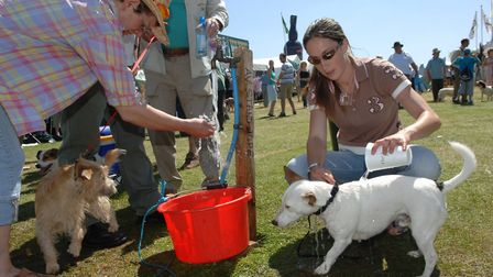There will be fun for two and four-legged visitors at an upcoming event at Holkham Estate. Picture: