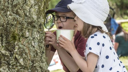 On the hunt for bugs at Pensthorpe Natural Park's Wild About the Wensum event, which runs on May 12.