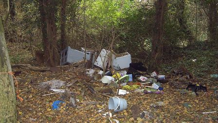 Rubbish in the woods in 2012 at the site of the unofficial village tip in Swannington. Picture: Mela