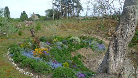 Planting round marlpit in 2015, as part of the regeneration of the site of the unofficial village ti