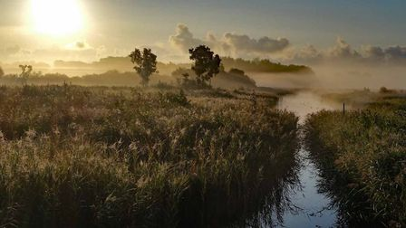 Midsummer sun rising over Sculthorpe Moor nature reserve. Pictures: Andy Thompson.