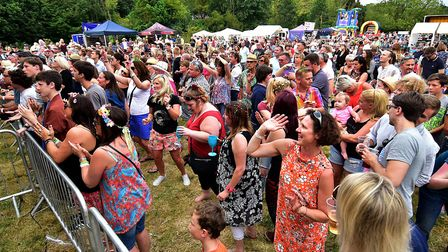 Reepham Festival is set to make its return with more than 20 bands and musicians. Picture: Antony Ke