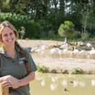 Chrissie Kelley, Head of Species Management at Pensthorpe at the dedicated Flamingo area of Pensthor