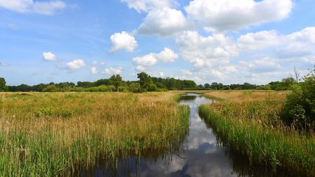 Sculthorpe Moor are ready to reopen their doors on June 15. Picture: Ian Burt