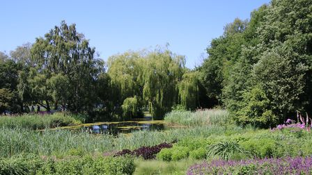 After a long break Pensthorpe Natural Park is looking wonderful in the sunshine.