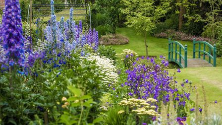 The beautiful gardens at Ditchingham Hall are open to the public this Sunday.
