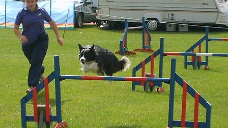 Canine Country Show