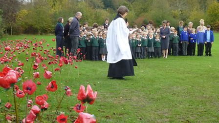Armistice Day service by the field of poppies at Holton Primary School.