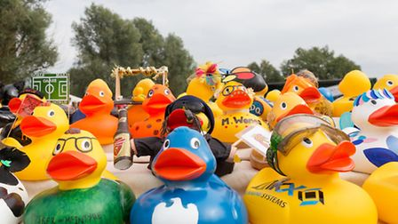 The 10th anniversary Beccles Duck Race. Picture: Justin Geyser