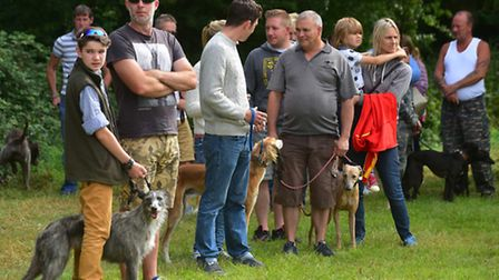 Canine Country Day at Raveningham. Racing