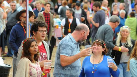 2015 CaLM Festival at The White Horse in Chedgrave. The Chedgrave and Loddon Music festival (CaLM) i