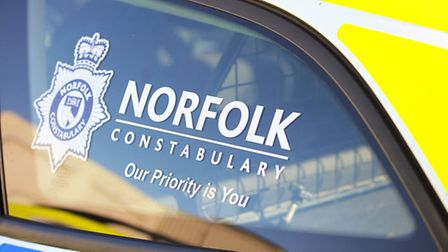 Norfolk Constabulary police vehicle. Picture: James Bass.