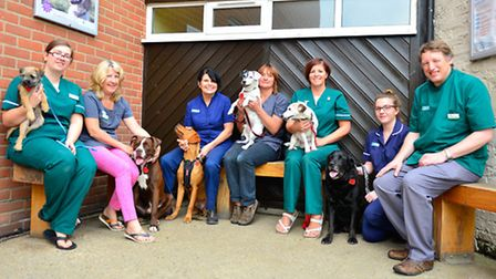 Jill Asquith, third from left with the team from Wangford Vets and some of the dogs parading their p