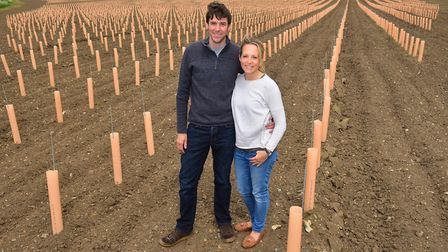 Ben and Hannah Witchell are creating a new vineyard in Earsham near Bungay.PHOTO: Nick Butcher