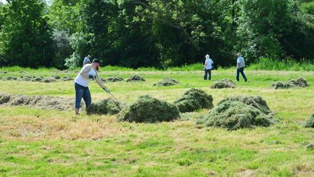 Trust members clearing the nettles at Falcon Meadow. Picture: Andrew Atterwill.