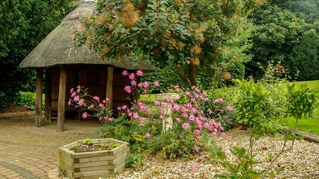 A sensory garden at All Hallows in Ditchingham. Picture: All Hallows Healthcare Trust