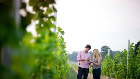 Flint Vineyard winemakers Ben and Hannah Witchell. Picture: Simon Buck.