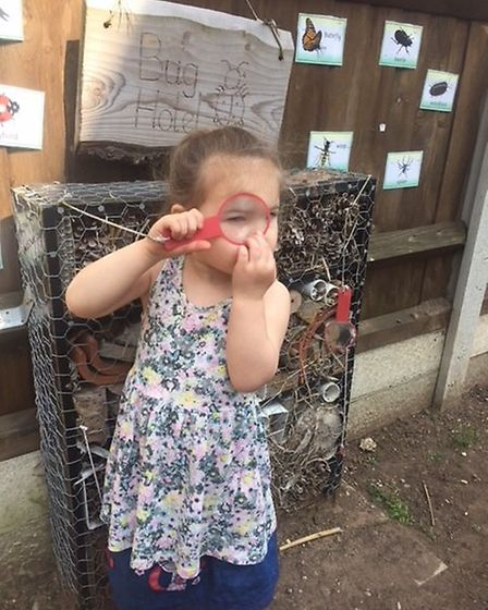 Esmé-Lillie Waterman discovers something interesting in Big Sky Nursery's new Bug Hotel. Pictures: C