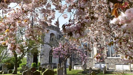 A flower festival is being held at St Michael's Church in Beccles.Picture: Nick Butcher.