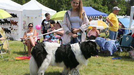 A companion dog show took place at St Olaves Village Hall to raise money for two cancer charities. P