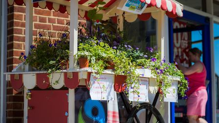 A community celebrated the best of their town during Beccles Charter Weekend. Picture: rolandblunk.c