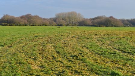 Jill Feathersone is concerned about the joy ryders that are causing damage to Beccles Common.PHOTO: