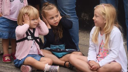 Spectators enjoy the Beccles Carnival parade even if the sirens and hooting are a little loud. Pictu
