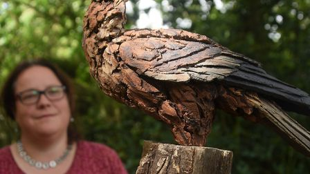 Sarah Cannell curator of the Waveney Valley Sculpture Trail at Raveningham. Picture: Denise Bradley