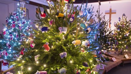 Hungate Church Christmas Tree Festival 2017.Picture: Nick Butcher