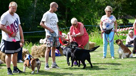Bungay's second dog show on Falcon Meadow in Ditchingham. PHOTO: Andrew Atterwill