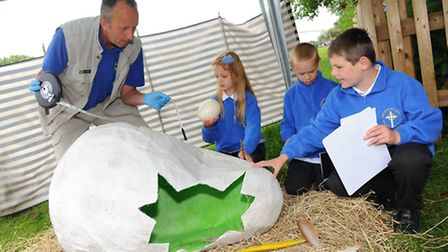Children from Harleston Primary school investigate the appearance of a mysterious nest and egg durin