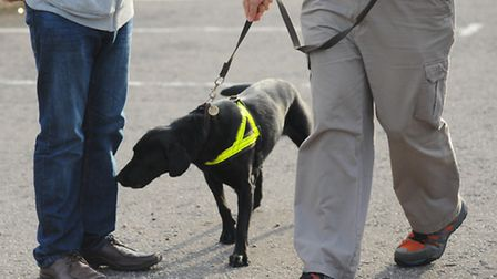 Plain clothed police patrol Diss town centre with sniffer dogs in a drugs crackdown.