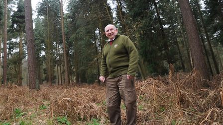 Clive Coles, of Save Sandlings Forests Group, in Rendlesham Forest