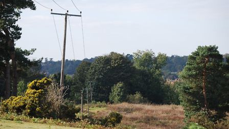 The view at Sutton Hoo, near Woodbridge, is set to be improved thanks to a £200,000 project to remov