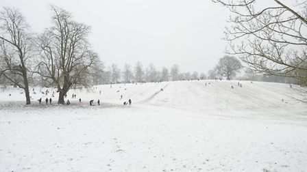 Fresh snowfall descends covering Suffolk in a blanket of white.