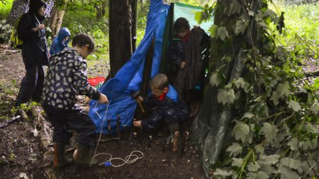 Pupils from Banham Primary School take a trip to the woods. Picture: Rupert Taylor.