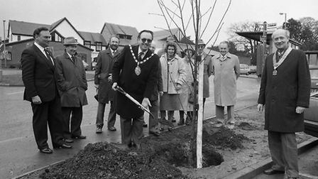 A Rotary Club tree planting at Woodbridge in March 1985. Can you tell us more?