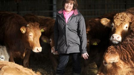 Sally Bendall, owner of Hollow Trees Farm