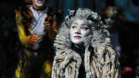 West End and Broadway hit CATS comes to the Ipswich Regent. Picture: Alessandro Pinna