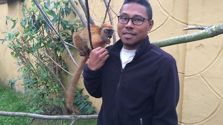 Guy Randriatahina, from The Lemur Conservation Association, with Belle the endangered blue-eyed blac