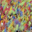 People throw colored powder into the air during the Holi Festival. Festivals take place around the w
