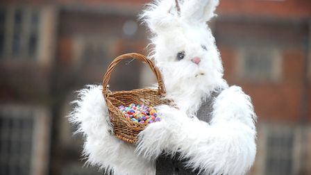 The Easter bunny is preparing for the weekend event at Kentwell Hall