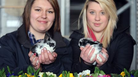 The Easter bunny show and auction at Eldon Farm in Holywell Row. Holly Lorraine (left) and Rebecca E