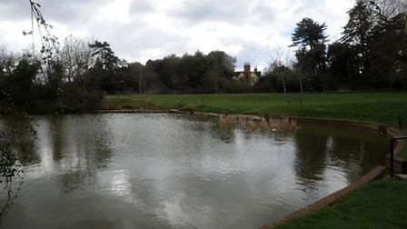 The pond off Haylings Grove in Leiston