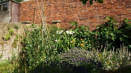 Gardens in Aldeburgh will be open to the public