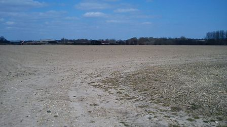 Dry land underfoot in Holbrook - photo Alison Connors