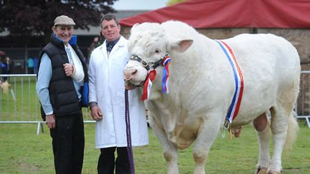 Day one of the Suffolk Show - Champion of the 'Any other pure beef breed best exhibit'. Champion of