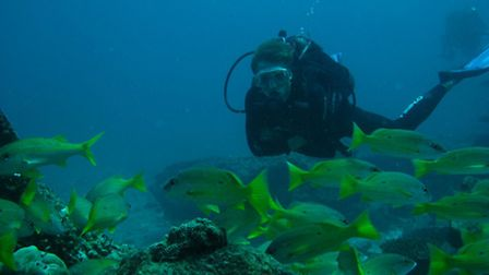 University of Essex students enjoyed an underwater lecture in Indonesia