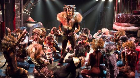 Jack Brett as Rum Tum Tugger in the Co-op Juniors Theatre Company's production of Cats. Pictures: Mi