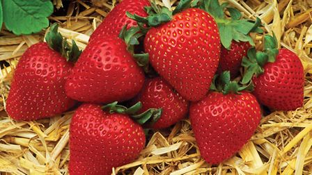 There are many ways to enjoy strawberries